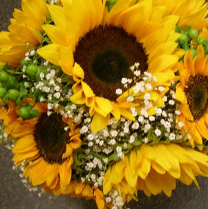 Sunflower bouquets Georgeham